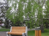Замена уличной мебели на площади возле здания администрации города Красноярска