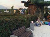 Благоустройство тематического парка развлечений Сочи-Парк
